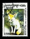 Zerda van Fennekfennecus, Honds van over de hele wereld serie, circa 2001 stock foto