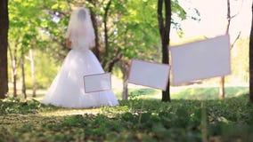 Zeremonie in einem Park stock video footage