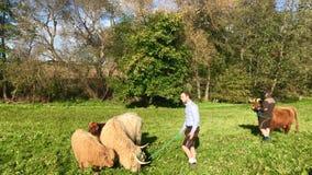 Zeremonieller Abfall des Viehs von den Sommerweiden im schwäbischen Alb Stockfotos