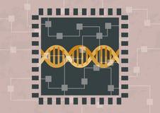 Zerhacken und Decodierung DNA lizenzfreie stockfotos