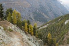 Zermatt, Швейцария стоковые фото