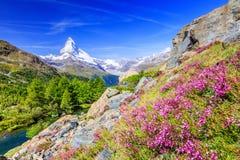 Zermatt, hotéis suíços em Zermatt, Switzerland de Switzerland Fotografia de Stock Royalty Free