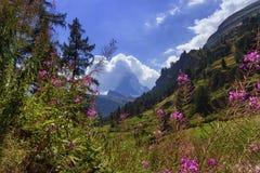 zermatt matterhorn Швейцарии Стоковые Фото