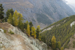 Zermatt Schweiz Arkivfoton
