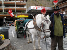 Zermatt Zwitserland - Zwitserse Alpen Royalty-vrije Stock Fotografie