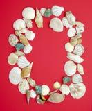 Zero with sea shells Royalty Free Stock Image