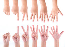 Zero to five fingers count signs Royalty Free Stock Photo