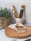 Zero waste concept. Eco-friendly food set. Spices in glass tubes, beans in cloth bag on wood board and plant in wood flowerpot. Co. Zero waste concept. Eco royalty free stock photo