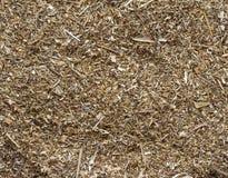 Zerquetscht getrocknet herauf heilendes Gras. lizenzfreies stockfoto