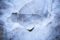 Zerquetschtes Eis in einem Wald, gefrorener Teich, der Eispanzer Lizenzfreie Stockfotografie