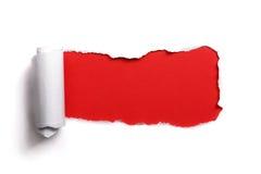 Zerreißen eines Papierfeldloches mit rotem Hintergrund Stockfotografie