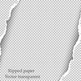 Zerrissener Papier- und transparenter Hintergrund mit Raum für Text Stockfoto