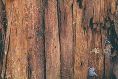 Zersplitterte hölzerne Beschaffenheit und Hintergrund Nahaufnahmeansicht der Splitterholzbeschaffenheit Abstrakte Beschaffenheit  Lizenzfreie Stockfotografie