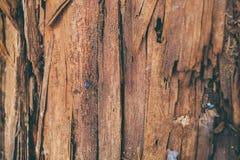 Zersplitterte hölzerne Beschaffenheit und Hintergrund Nahaufnahmeansicht der Splitterholzbeschaffenheit Abstrakte Beschaffenheit  Lizenzfreie Stockfotos