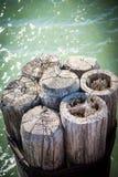 Zersplitterte hölzerne Dockbeiträge versenkten in grünes Wasser des Michigansees lizenzfreies stockfoto