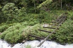 Zerstörte Brücke in einem Dschungel Lizenzfreie Stockfotos