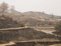 Zerstörter Park-Abhang von Thomas Fire in Kalifornien Stockfoto