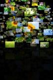 Zerstreute Bilder Stockbilder