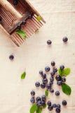 Zerstreute blaue Beeren auf weg von weißem Stoff Stockbild
