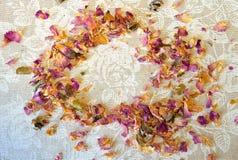 Zerstreute getrocknete Blumenblätter der Teerose auf Tischdecke mit weißen Rosen und des Platzes für Ihren Text Stockfotografie