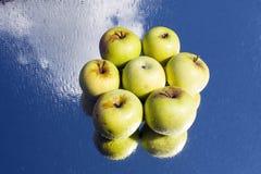 Zes appelen Royalty-vrije Stock Foto's