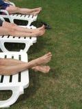Zes benen Stock Foto's