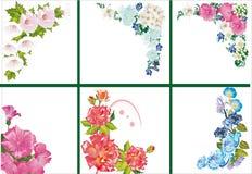 Zes bloemenhoeken op wit Stock Fotografie