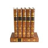Zes bruine boeken Royalty-vrije Stock Afbeeldingen