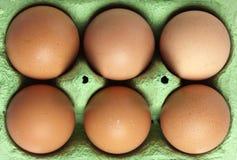 Zes bruine eieren in de doos, vogelsmening Stock Foto