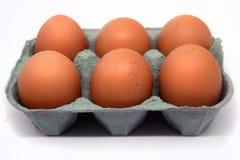 Zes Eieren Stock Fotografie