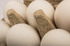 Zes eieren in een dienblad voor tien eieren isoleren Stock Afbeeldingen