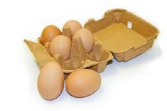 Zes eieren met karton Stock Afbeelding