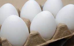 Zes Eieren van de Kip stock afbeelding