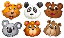 Zes hoofden van beren stock illustratie
