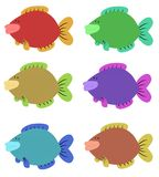 Zes Kleurrijke Vissen Stock Afbeelding
