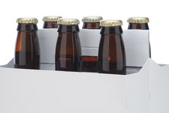 Zes pak bruine bierflessen stock fotografie