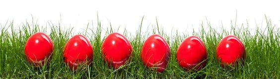 Zes rode eieren Royalty-vrije Stock Afbeelding