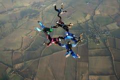 Zes skydivers Royalty-vrije Stock Afbeelding