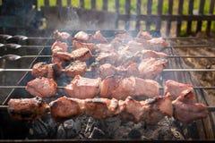 Zes vleespennen van vlees op de grill in rook Stock Foto's