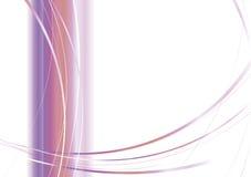zespół mgiełki purpurowy Zdjęcie Stock