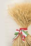 zespołu tricolor kukurydzany tasiemkowy symboliczny Obrazy Royalty Free
