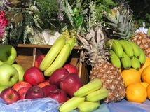 zestaw owoców Fotografia Royalty Free