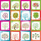 Zestien bomen Stock Afbeeldingen