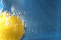 Zesty lemon Royalty Free Stock Photo