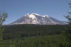 Zet Adams Cascadewaaier Gifford Pinchot National Forest de V.S. op stock foto