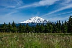 Zet Adams, de Staat van Washington op stock afbeeldingen