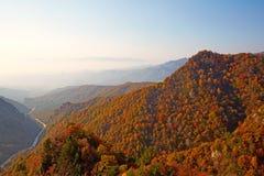Zet Bailongshan-de herfst, Shanxi, China op royalty-vrije stock afbeeldingen