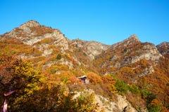Zet Bailongshan-de herfst, Shanxi, China op stock afbeeldingen