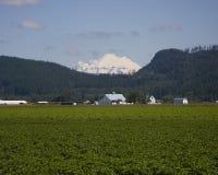 Zet Baker en landbouwgronden op Stock Foto's