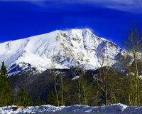 Zet Chapin in Rocky Mountain National Park op Stock Foto's